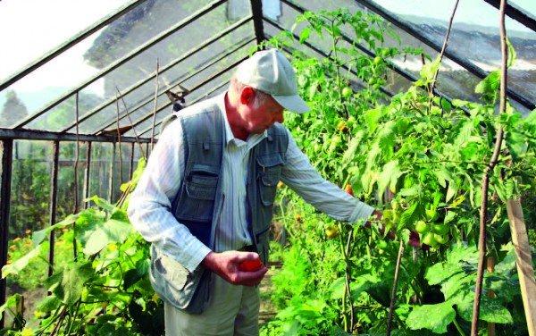 Ilustracija: organska proizvodnja, foto: http://www.serbiaorganica.info