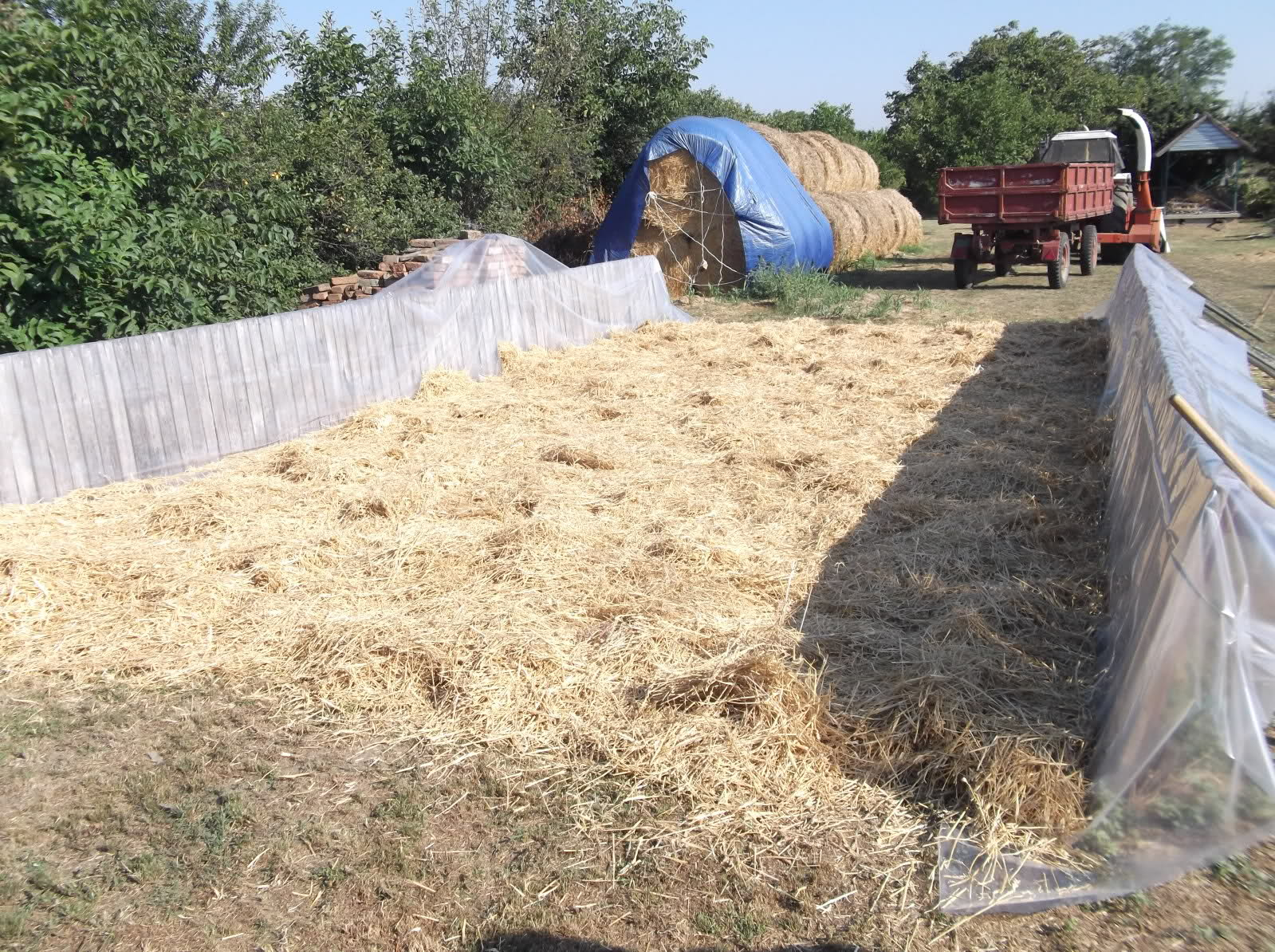 Ilustracija, silaža kukuruza, foto: http://i47.tinypic.com/