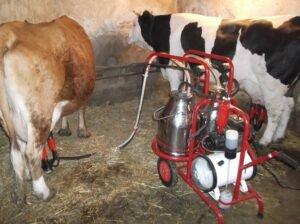 Ilustracija: aparati za mužu krava, foto: http://i40.tinypic.com/