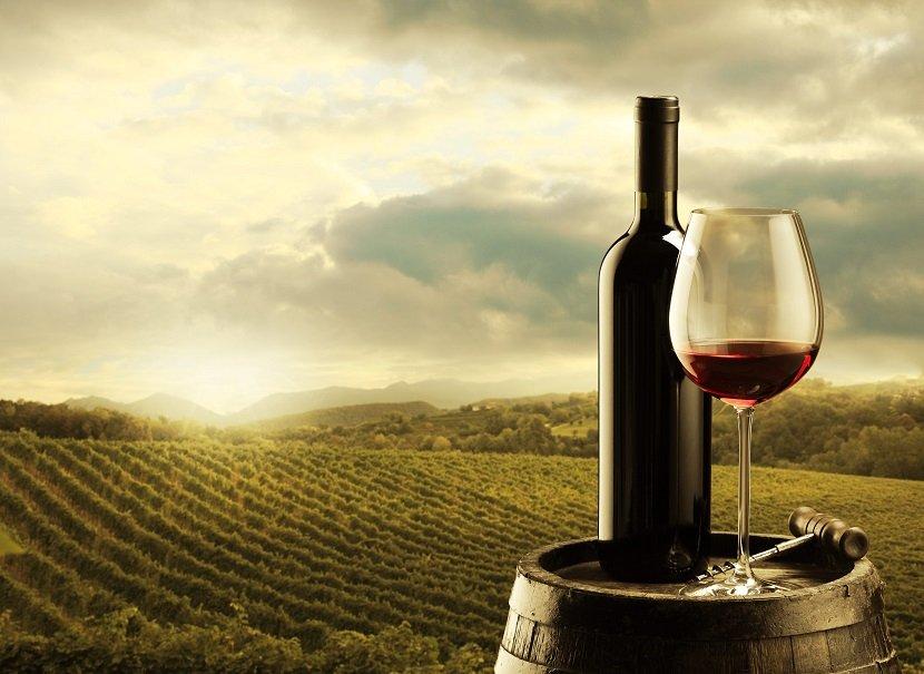 Ilustracija: vino i vinograd, foto: http://insightmine.com/