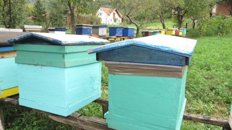 Pčelarima više od šest miliona bespovratno