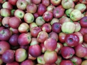 Ilustracija. jabuke spremne za prodaju, foto: S.K.