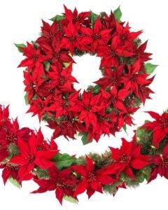 Ilustracija: božićna zvezda, foto:https://www.webphotosource.net