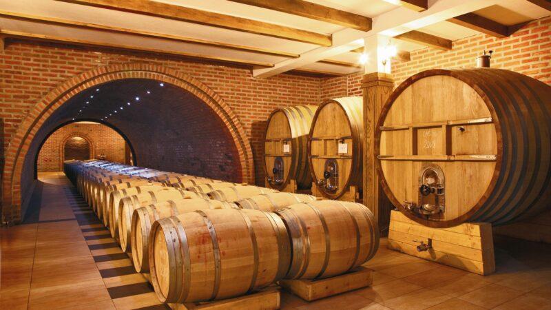 Kako pravilno čuvati vino