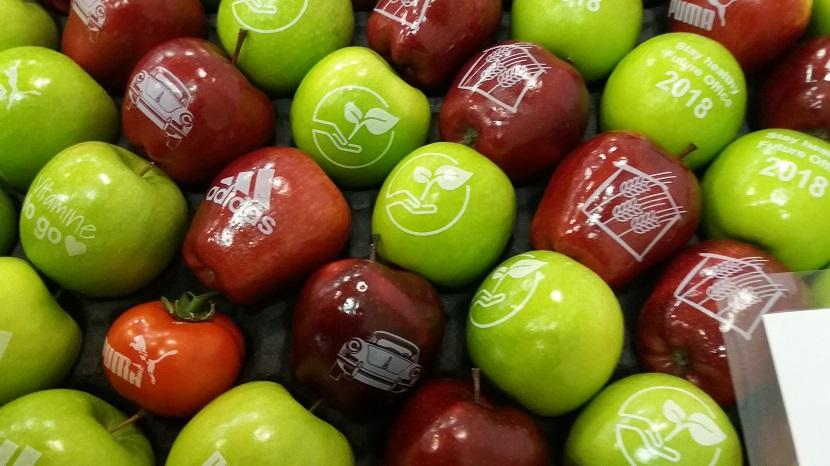 Ilustracija: Jabuke sa sajma u Berlinu
