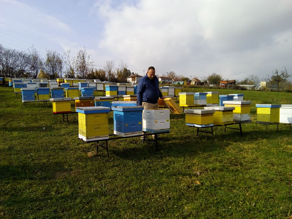 Ilustracija: Pčelinjak iz okoline Valjeva, foto: D.D.