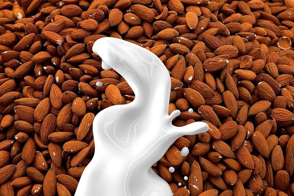 Ilustracija: badem, foto: https://pixabay.com