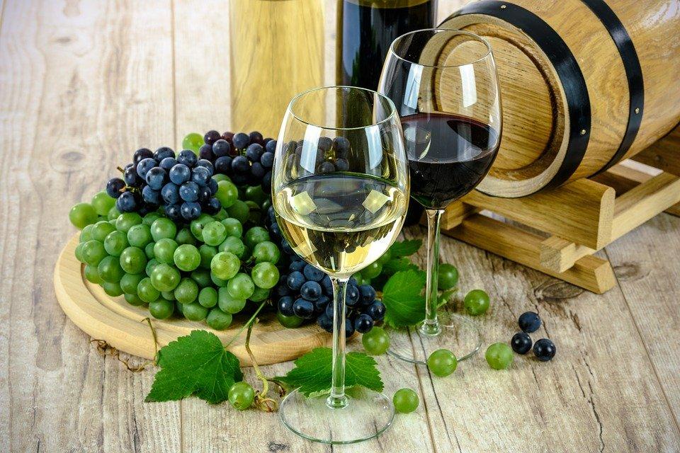 Ilustracija: Italijanska vina, foto: pixabay
