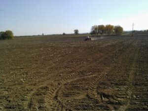 Ilustracija: poljoprivredno zemljište