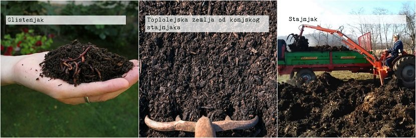 Ilustracija, Supstrati, foto: Ivana Trifković