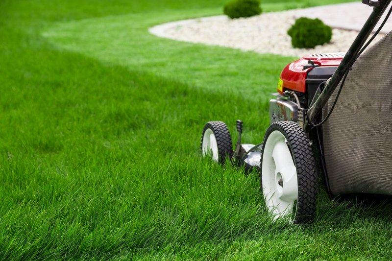 Ilustracija: košenje travnjaka, foto: http://revistajardins.pt