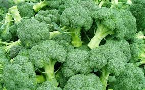 Ilustracija: brokoli, foto: http://ootymade.com/