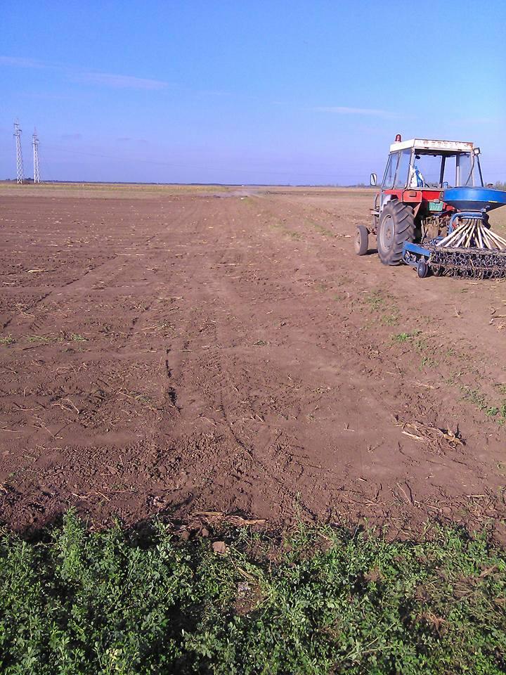 Ilustracija: poljoprivreda vojvodine, foto: Domaćinska kuća