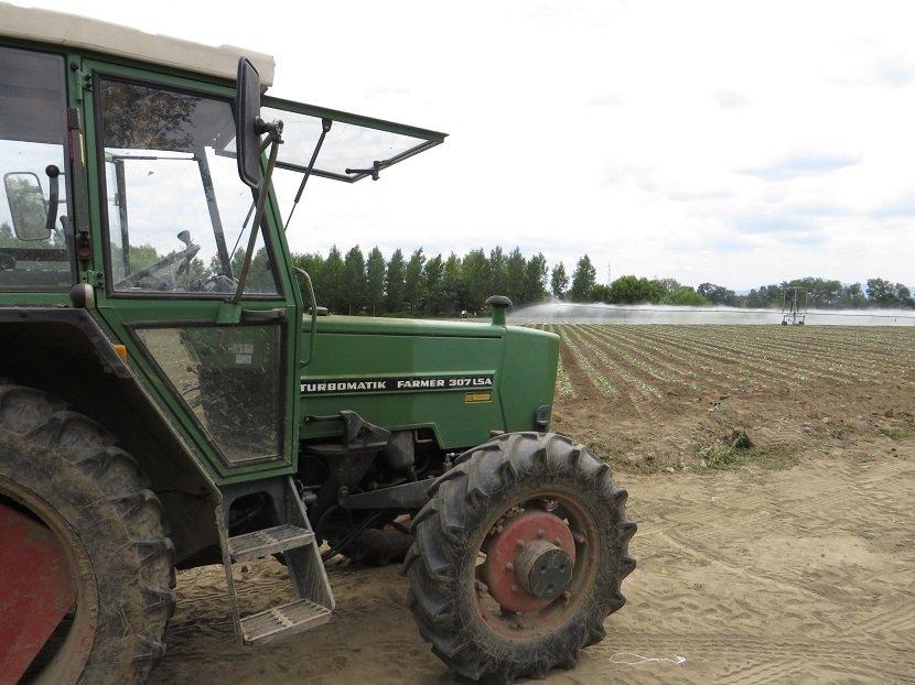Ilustracija: srpski poljoprivrednici, foto: Domaćinska kuća