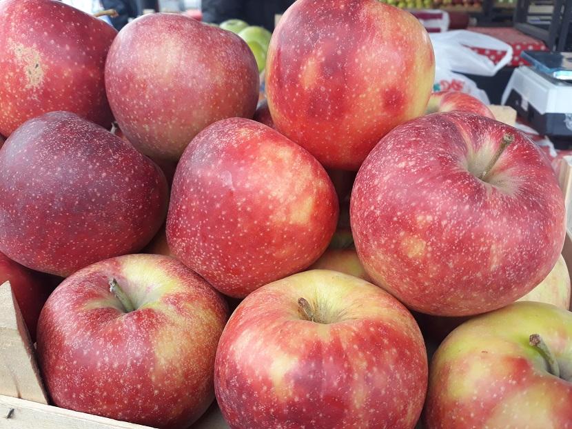 Ilustracija: voće, foto: Domaćinska kuća