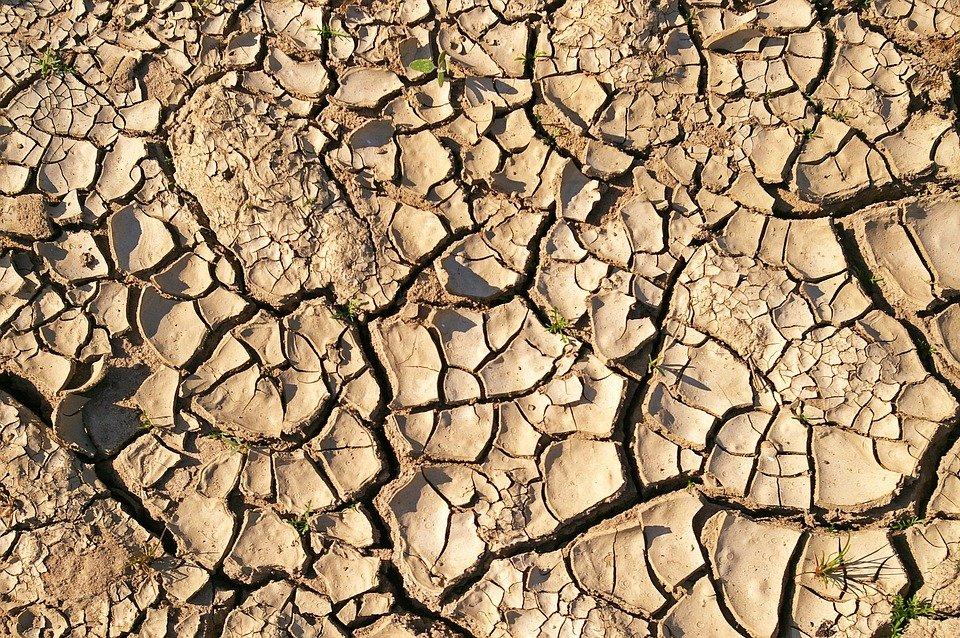 Zemljište, fotografija preuzeta sa sajta pixabay.com / autor: Kerstin Riemer