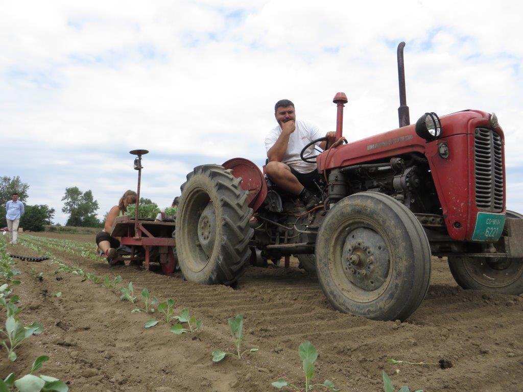 Ilustracija: radovi u polju, foto: G.Đ.