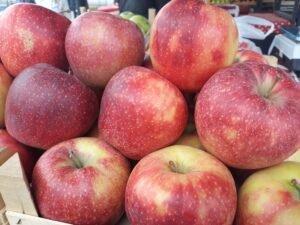 Ilustracija: jabuke, foto: Domaćinska kuća