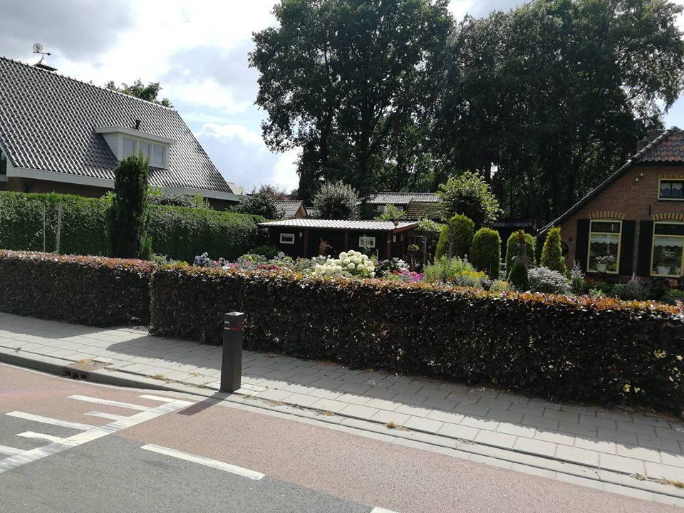 Ilustracija: Garderen, selo u Holandiji, foto: Svetlana Kovačević