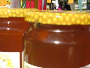 Ilustracija: pčelarastvo. foto: Svetlana Kovačević