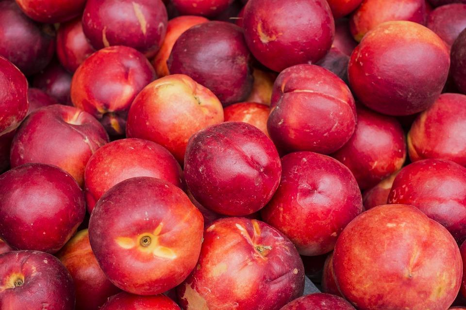Ilustracija: nektarine, foto: pixabay