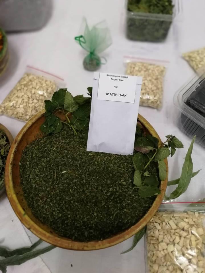 Ilustracija: lekovito bilje, foto: Domaćinska kuća
