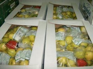 Ilustracija: jabuke u u ambalaži, foto: Domaćinksa kuća