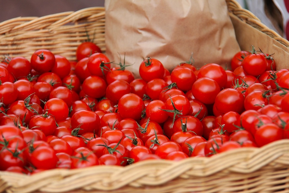 Ilustracija: organski paradajz, foto: pixabay