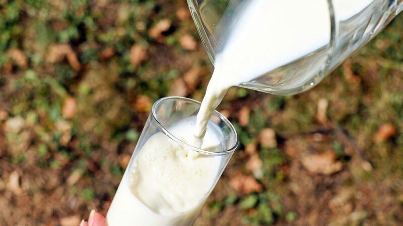 Konkurs  za mleko i meso