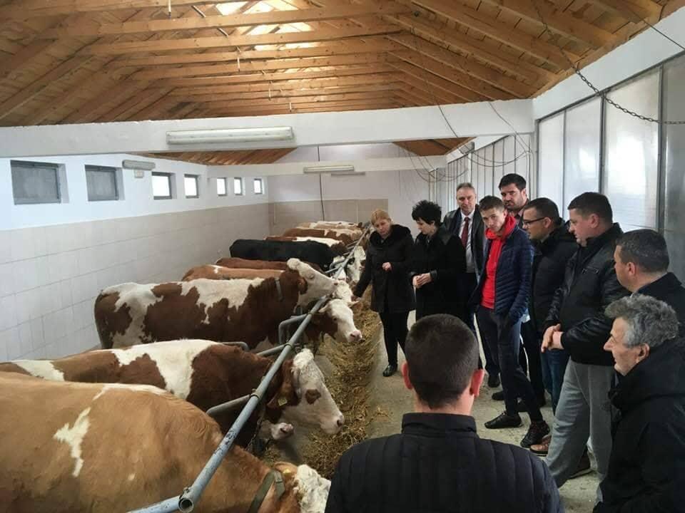 Ilustracija: Farma Milana Stamenkovića, foto: Milan Stamenković