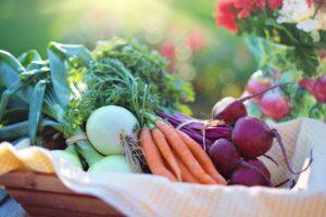 Ilustracija: korenasto povrće, foto: pixabay, autor: Jill Wellington