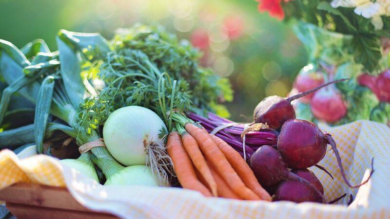 Koja je najbolja zaštita korenastog povrća
