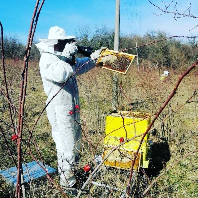 Ilustracija: Igor u svom pčelinjaku, foto: Iz arhive Igora Đurđevića