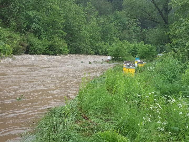 Ilustracija: poplave, foto Domaćinska kuća