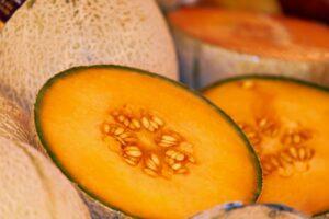 Ilustracija: dinja, foto: pixabay.com, autor: Ilona