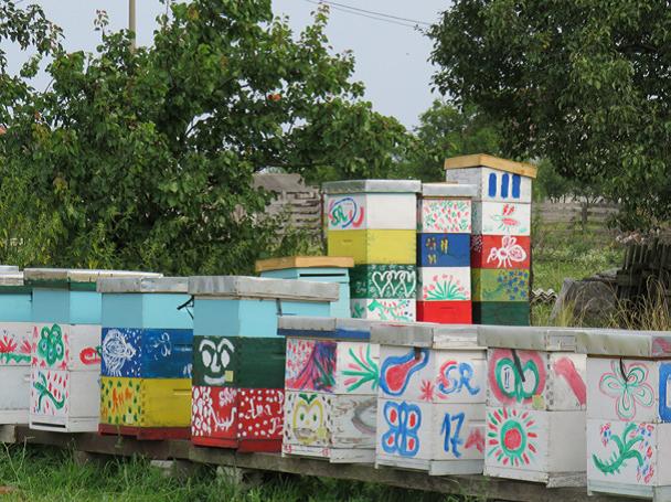 Spoj slikarstva i pčelarstva 1