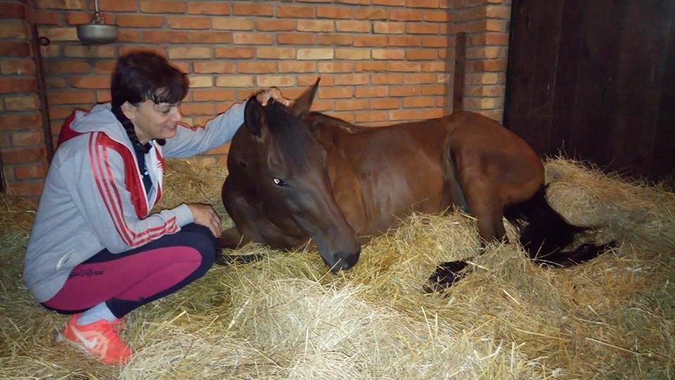 Ilustracija: Ariana Ilić, sa svojim ljubimcem, foto: Domaćinska kuća