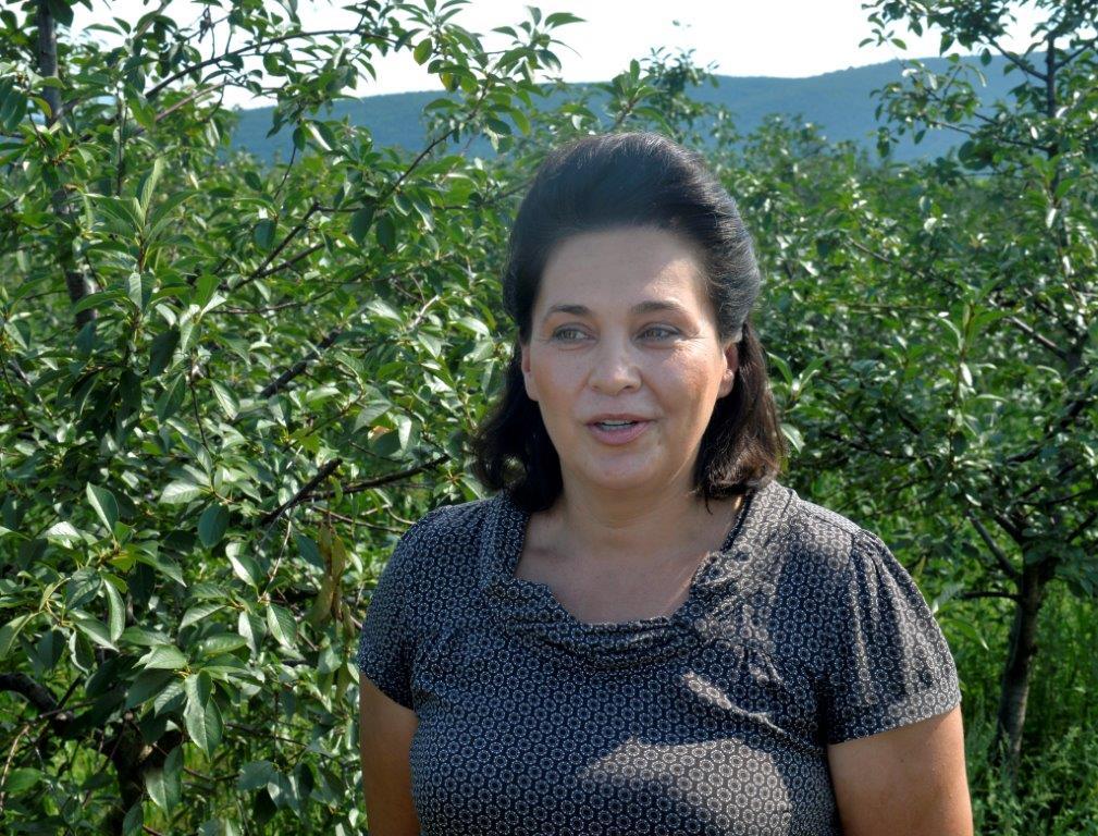 Ilustracija: Želica Milojević, foto: Agropress