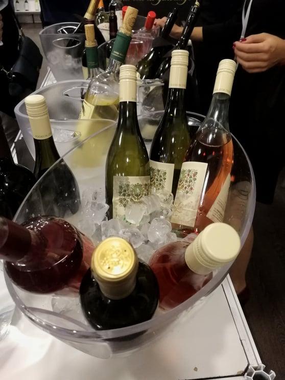 Ilustracija: vina, foto: Svetlana Kovačević