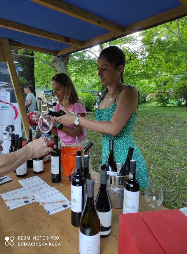 Ilustracija: Sa wine gardena, foto: Svetlana Kovačević