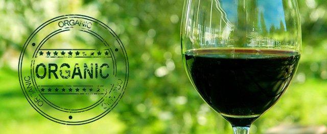Da li je moguća i koliko je isplativa organska proizvodnja vina?