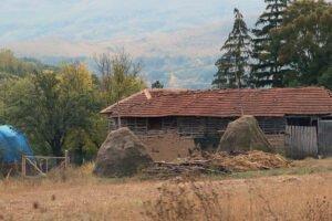Polja Srbije, poljoprivreda, foto: Marko Miladinović